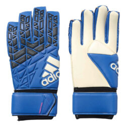 Προσφορά από το Cosmossport σε adidas Performance  - adidas Performance Ace Competition Goalkeeper Glov (3043600102_24325) - DealFinder.gr