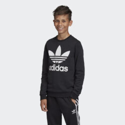 Προσφορά από το Cosmossport σε adidas Originals  - adidas Originals Trefoil Παιδική Μπλούζα Φούτερ (9000031717_1480) - DealFinder.gr
