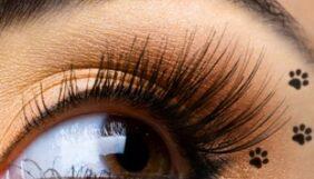 Προσφορά Deal από το Bodydeals - Μακιγιάζ Προσώπου Αργυρούπολη - 105€ από 400€ (Έκπτωση 74%) για Ημιμόνιμο Μακιγιάζ Προσώπου σε Μάτια Άνω και Κάτω Γραμμή, από το Studio Αισθητικής «Beauty Secret» στην Αργυρούπολη!!! - DealFinder.gr