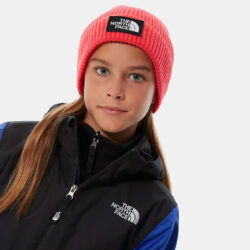 Προσφορά από το Cosmossport σε the north face  - THE NORTH FACE Box Logo Cuff Παιδικός Σκούφος (9000063341_4777) - DealFinder.gr