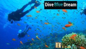 Προσφορά Deal από το Dealtown - 189€ για εκμάθηση αυτόνομης κατάδυσης για απόκτηση πρώτου διπλώματος Open Water Diver SSI (έως 18μ) από την Σχολή «Dive Blue Dream» στους Αγίους Αναργύρους. - DealFinder.gr