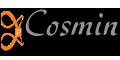 Παρουσίαση ιστοσελίδας Cosmin -